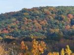fall-colours-14