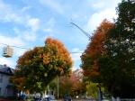 fall-colours-2
