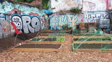 urban allotments